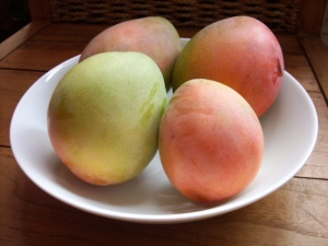 Fresh Taboga Mangos, right off the tree...